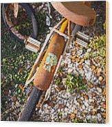 Rusty Bike Bumper Wood Print