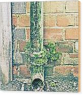 Rusty Drainpipe Wood Print