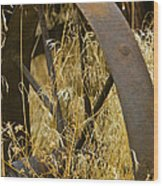 Rusty Old Wheel And Yellow Grasses Wood Print