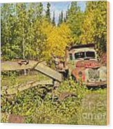 Rusty Truck And Grader Forgotten In Fall Forest Wood Print