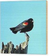 Rwbl Wood Print