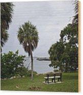Ryckman Park In Melbourne Beach Florida Wood Print by Allan  Hughes