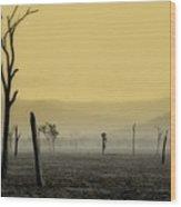 S P I R I T  Land Wood Print