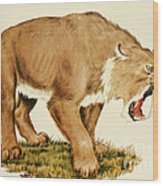 Sabretooth Cat Wood Print