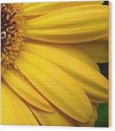 Sac331d-005 Wood Print