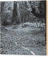 Sacramento River Walk At Turtle Bay Wood Print