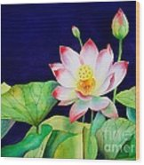 Sacred Lotus Wood Print by Robert Hooper