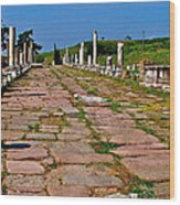 Sacred Road To Asclepion In Pergamum-turkey  Wood Print