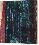 Sacred Space Wood Print