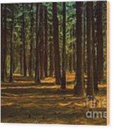 Sacred Warrior Grove Wood Print