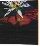 Sacred Water Lilies Wood Print