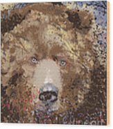 Sad Brown Bear Wood Print