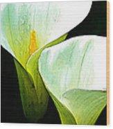 Sad Lillies Wood Print