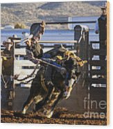 Saddle Bronc Riding Competition Wood Print
