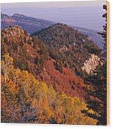 Saddle Mountain Autumn-sq Wood Print