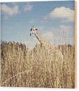 Safari Giraffe  Wood Print