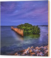 Safe Haven Wood Print by Marvin Spates