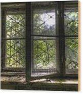 Safe Window Wood Print
