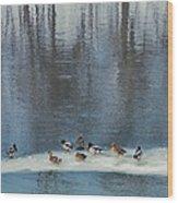 Safehaven   Indiana   Winter Wood Print
