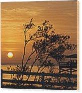 Safety Harbor Sunrise Wood Print