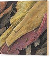 Saffron, Sem Wood Print