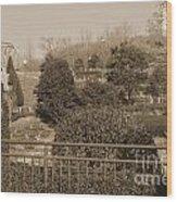 Sagamihara Asamizo Park 16b Wood Print