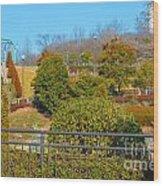 Sagamihara Asamizo Park 16h Wood Print