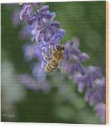 Sage Bee Wood Print