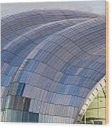 Sage Gateshead Roof Close Up Wood Print