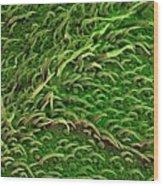 Sage Leaf Wood Print