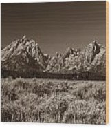 Sagebrush And Tetons Wood Print