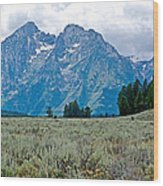 Sagebrush Flatland And Teton Peaks Near Jenny Lake In Grand Teton National Park-wyoming- Wood Print
