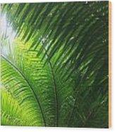 Sago Shade Wood Print