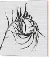 Sago Swirl Wood Print