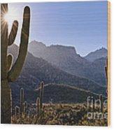 Saguaro Cacti And Catalina Mountains Wood Print