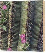 Saguaro Cactus And Wildflowers Wood Print