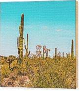 Saguaro Cactus In Organ Pipe Monument Wood Print