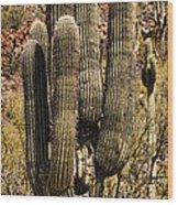 Saguaro Of Many Arms Wood Print