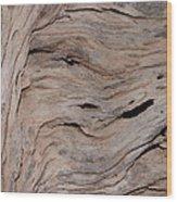 Saguaro Skeleton Wood Print