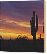 Saguaro Sunset II  Wood Print