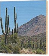 Saguaros And Mountain Wood Print