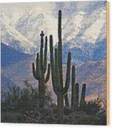 Saguaros And Snow Wood Print