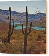 Saguaros In Arizona Wood Print