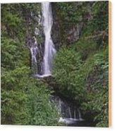 Sahale Falls In Oregon Wood Print