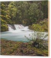 Sahalie Oasis Wood Print