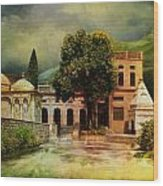 Saidpur Village Wood Print by Catf