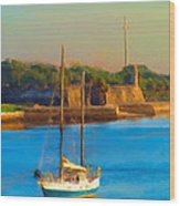 Da147 Sailboat By Daniel Adams Wood Print