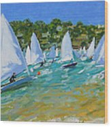 Sailboat Race Wood Print by Andrew Macara