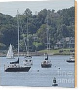 Sailboat Serenity Wood Print