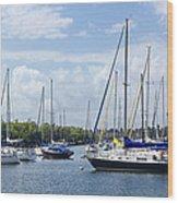 Sailboat Series 05 Wood Print